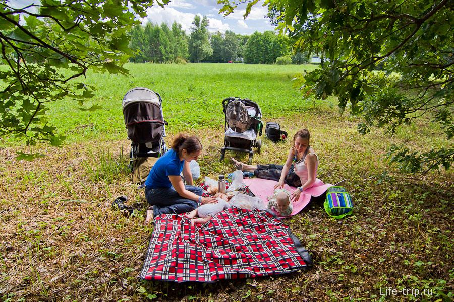 Наш небольшой пикник