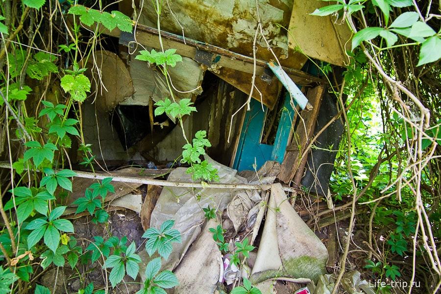 Вблизи оказывается каким-то заросшим и разрушенным дачным строением