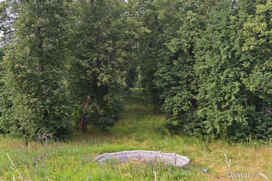 Липовая аллея ведущая к реке