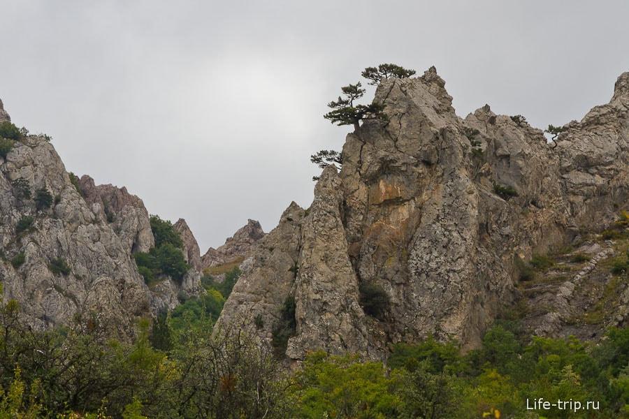Ну чем не китайские скалы из Аватара?