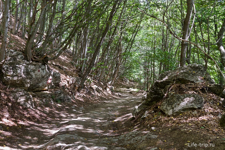 Вдоль дорог часто лежат каменные глыбы
