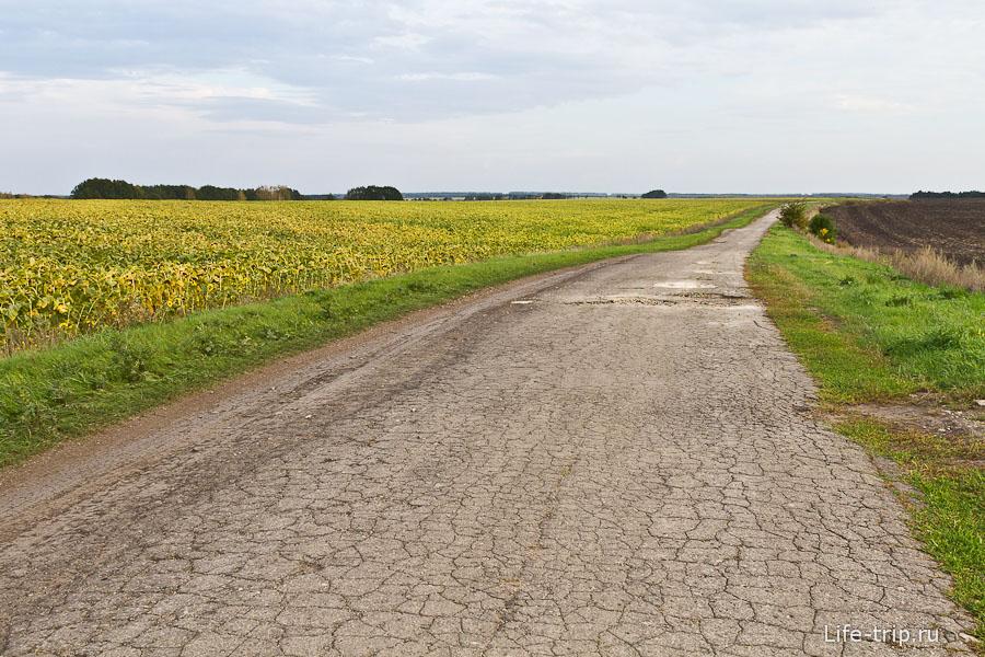 Странно видеть кусок асфальта среди полей и грунтовок