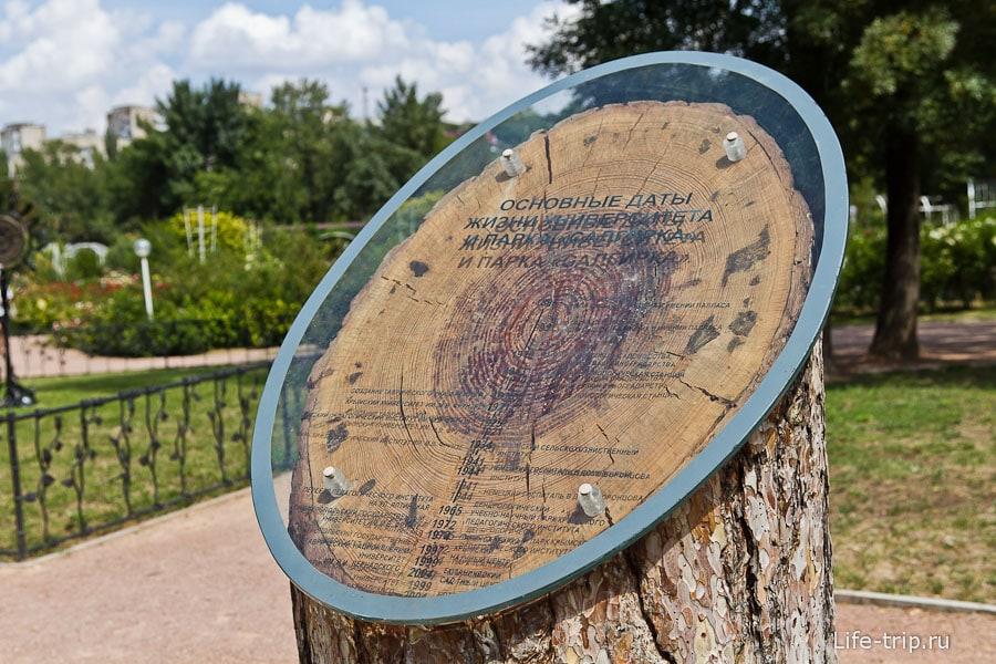 Круги на дереве означают основные даты Воронцовского парка