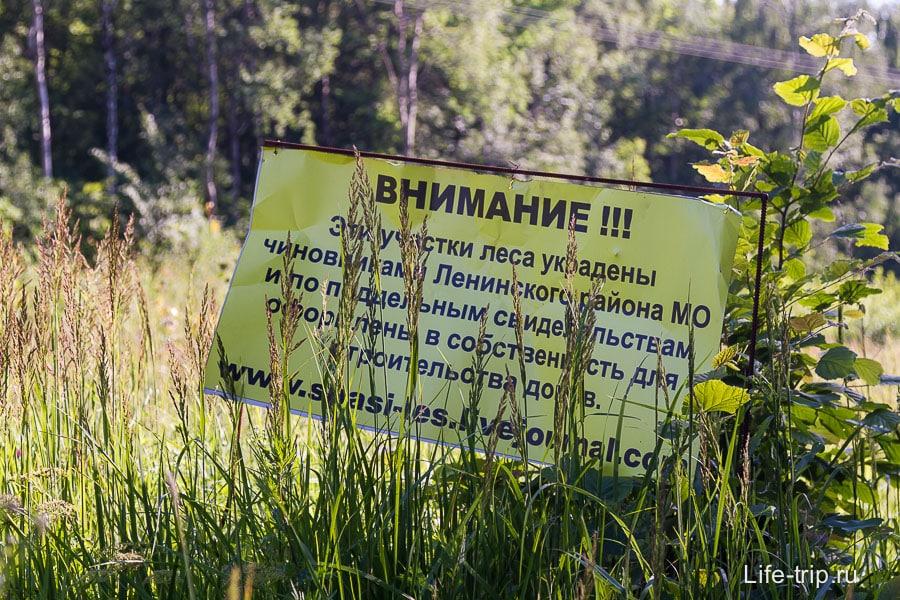 Возможно бутовский лес через время исчезнет