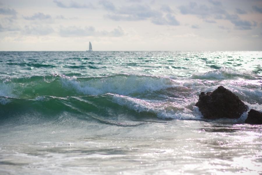 Впереди океан...