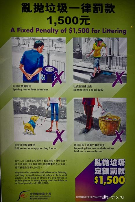 За плевки и мусор можно попасть на штраф