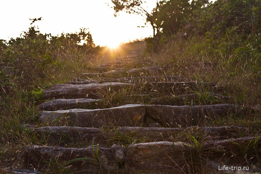 Во многих местах сделаны каменные ступени для удобства хайкеров