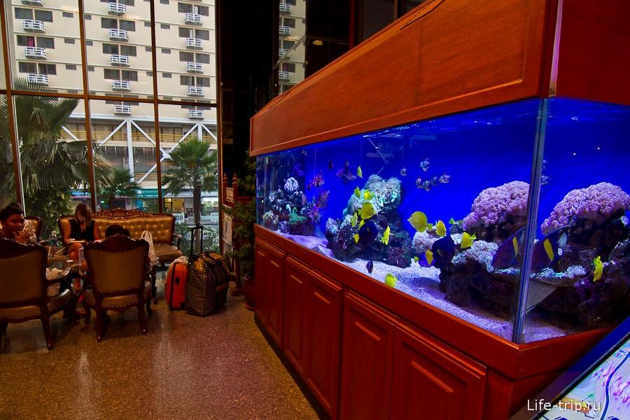 В лобби аквариумы с рыбинами