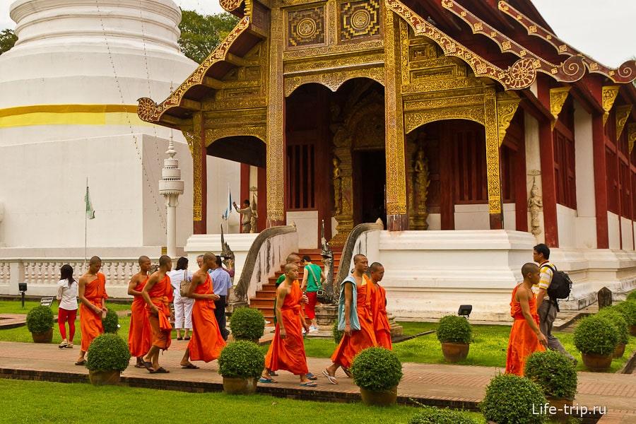 Молодое поколение монахов и кто из них вырастет?