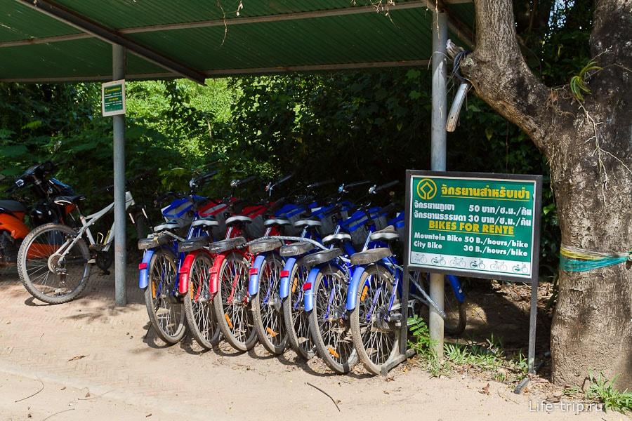 Аренда велосипедов в историческом парке Кампенг Пет