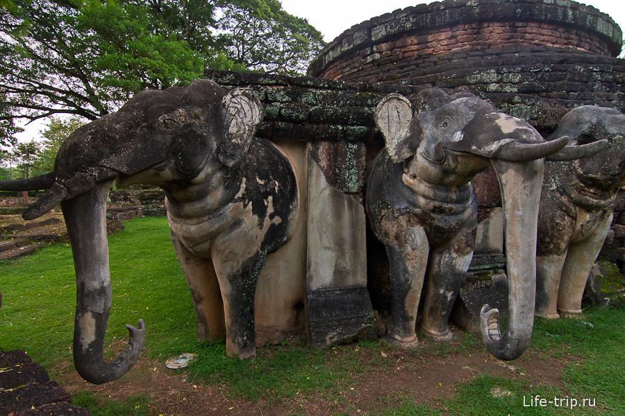 Слонам приделали хоботы обратно