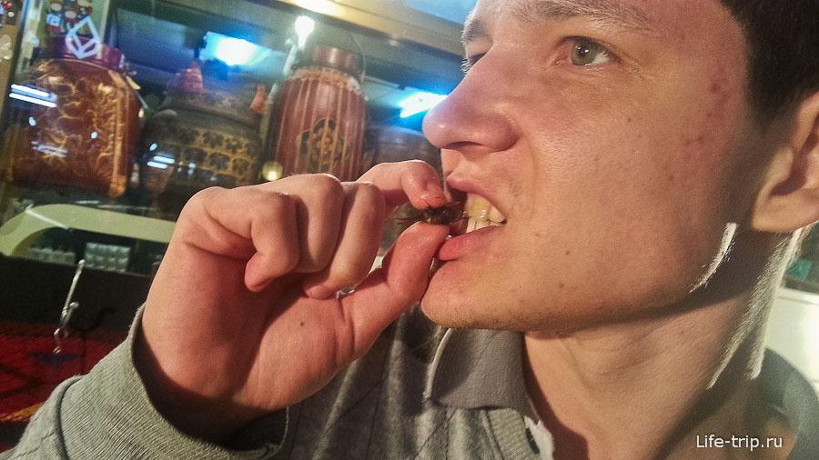 Андрей, демонстрирует, как ему нравятся кузнечики
