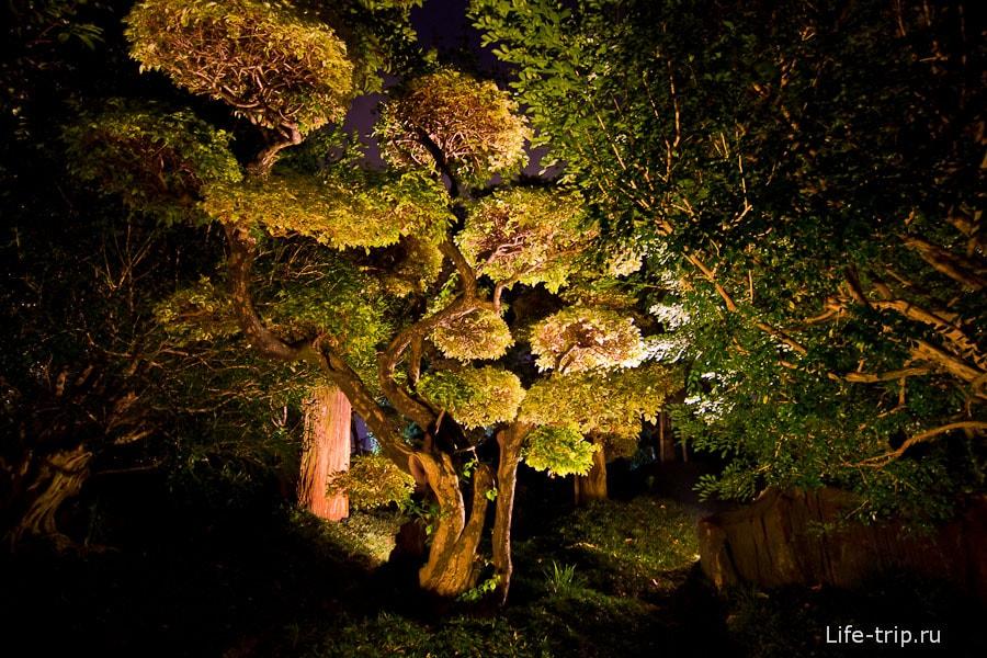 Сад Нан Лиан (Nan Lian Garden)