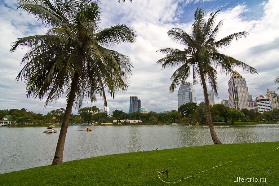 Зеленый оазис в центре мегаполиса
