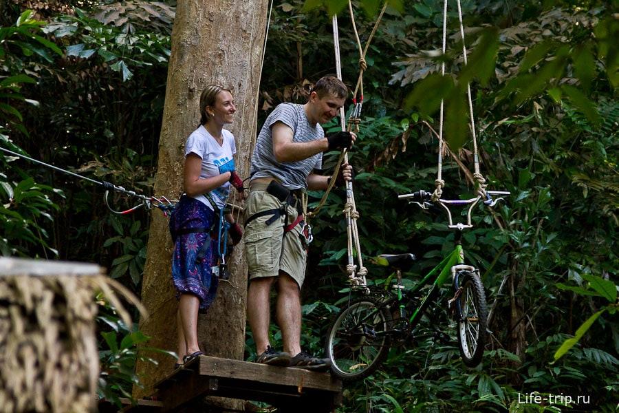 Ходим по веревочным тропам Tree Park