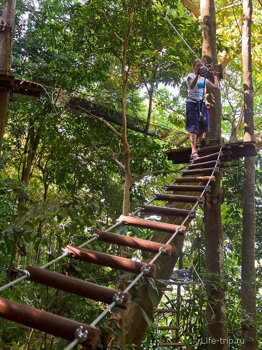 Ходим по верёвочным тропам Tree Park