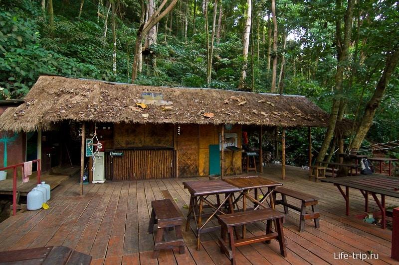 Площадка Tree Top Adventure Park откуда все начинается
