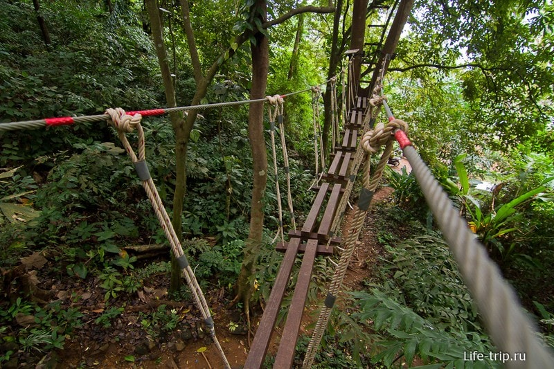 Куда цеплять страховочные карабины показано красными метками