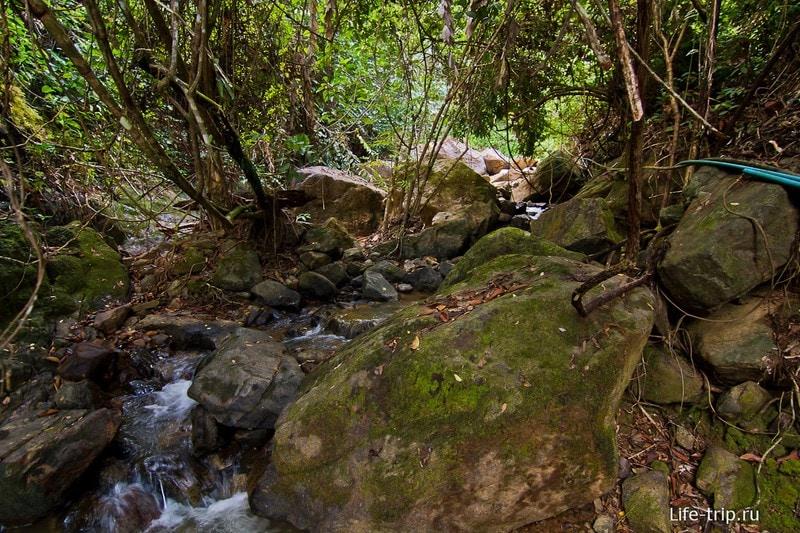 Вот по этому руслу пилить полчаса до водопада Klong Nung Waterfall