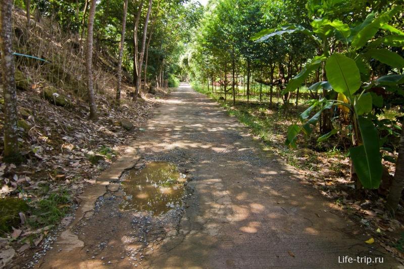 Дорожка к водопаду Тан Майом