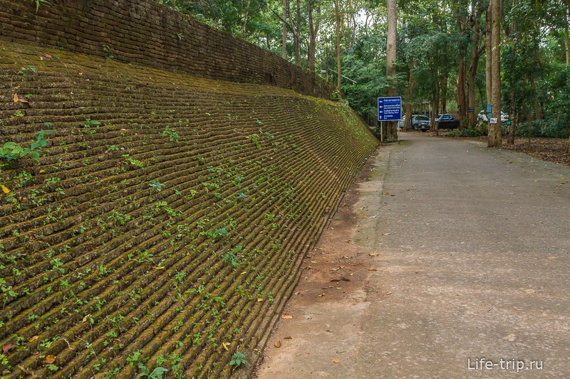 Туннельный храм Wat Umong (1)