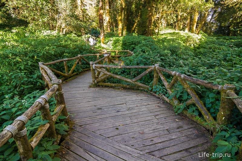 Национальный парк Doi Inthanon (43)