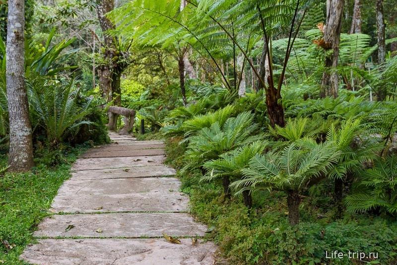 Национальный парк Doi Inthanon (20)