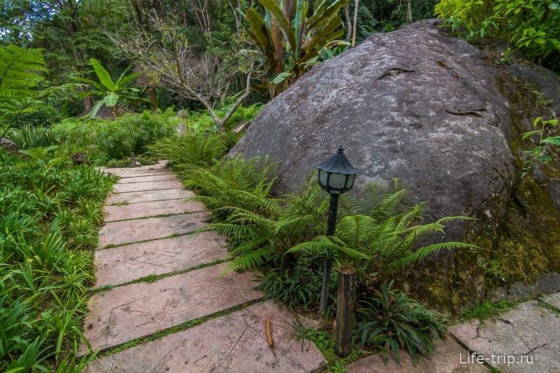 Национальный парк Doi Inthanon (19)