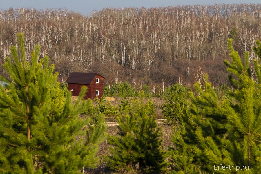 Почему стоит уехать жить в деревню или экопоселение (19)