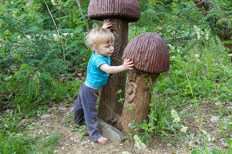 Какой же грибочек выбрать...