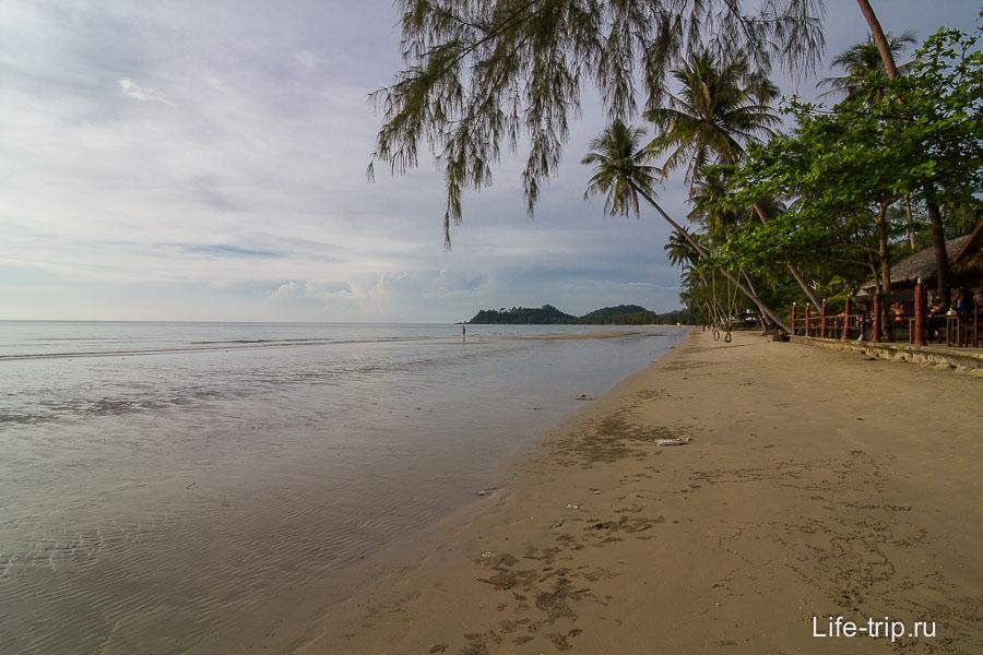 Klong Prao в районе пальмового леса