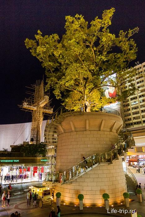 Дерево на пьедестале