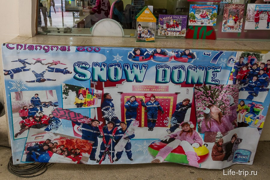 Snow Dome рядом с пандами, там целых -7 град!