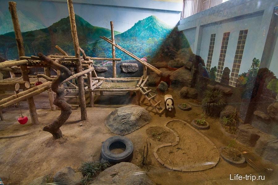 Первый павильон с пандами, тут они за стеклом