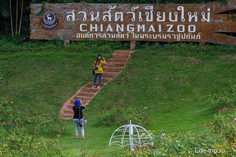 Зоопарк в Чиангмай