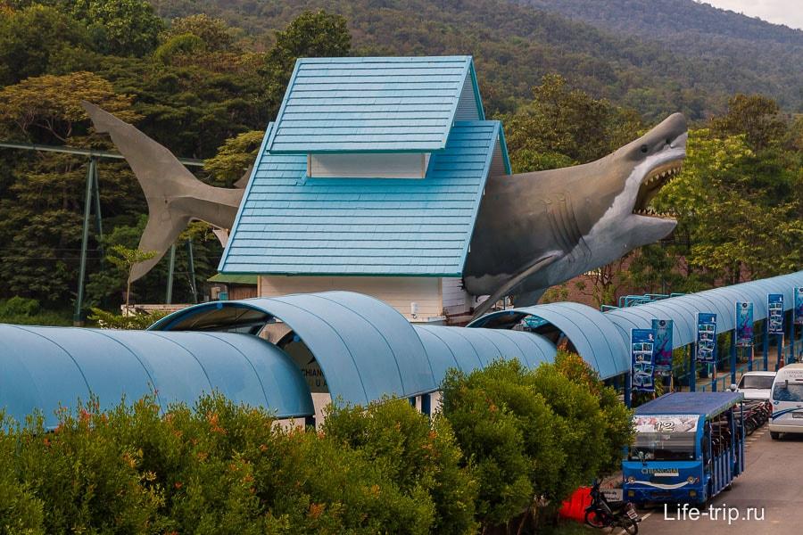 Оригинальный вход в аквариум