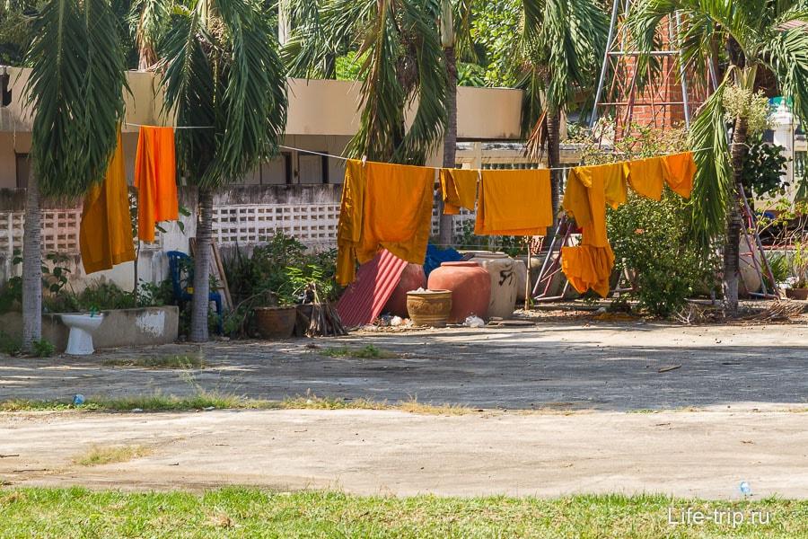 На заднем дворе храма