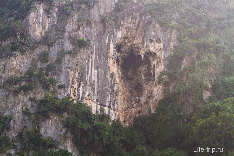 Возможно вылетают из подобной пещеры