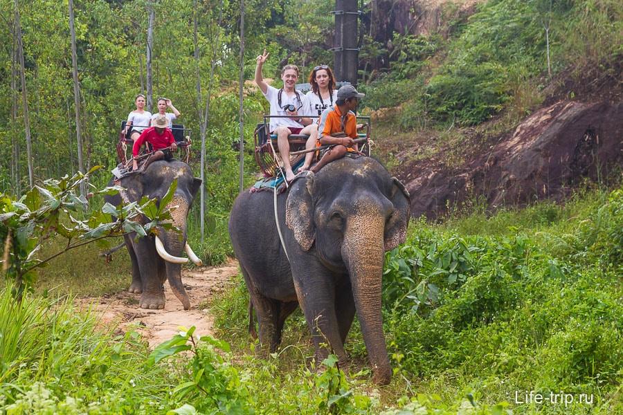 Покатушки на слонах около Klong Plu Waterfall