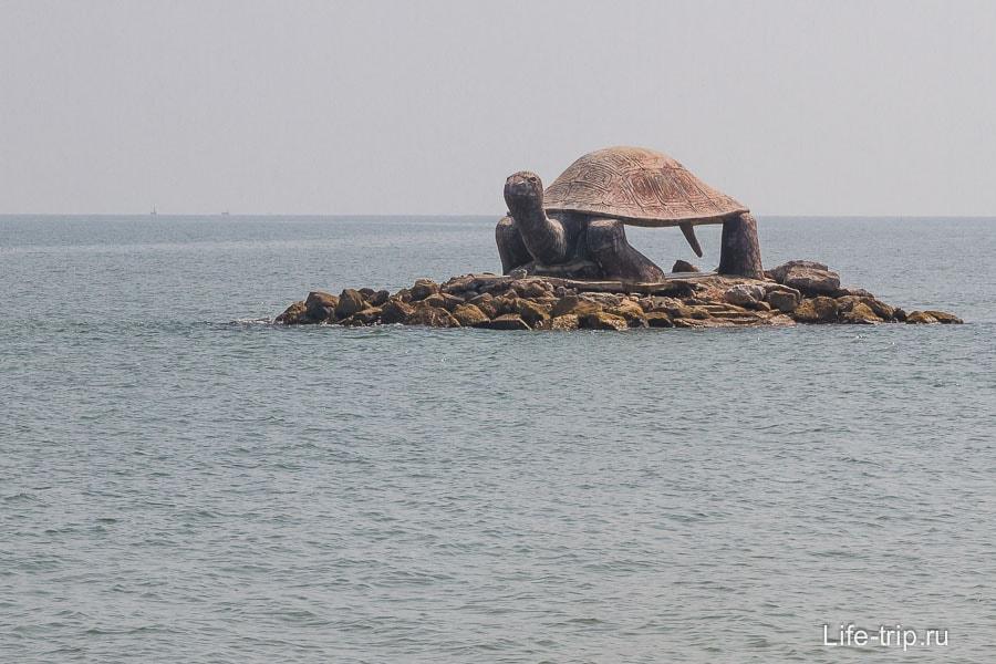 Остров с черепахой