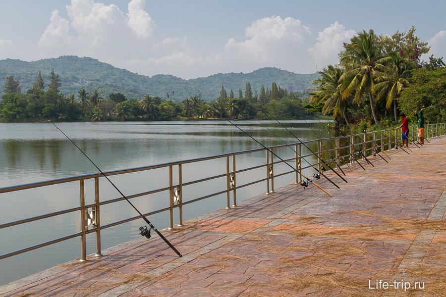 Рядом с горой Кхао Тао есть озеро, где популярна рыбалка