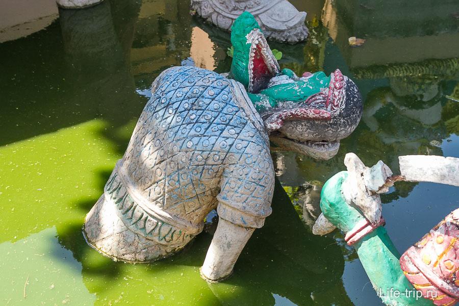 В зеленой жиже некто кладет голову в пасть крокодилу