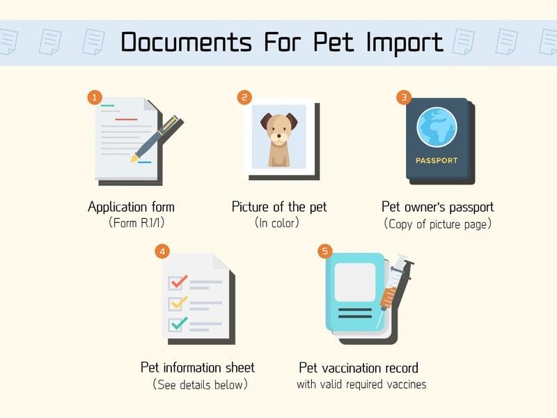 В Тайланд с собакой или кошкой - перевозка животных за границу