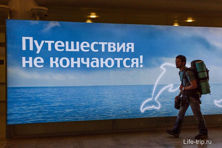 В аэропорту: городской убран в походный, фотосумка снаружи
