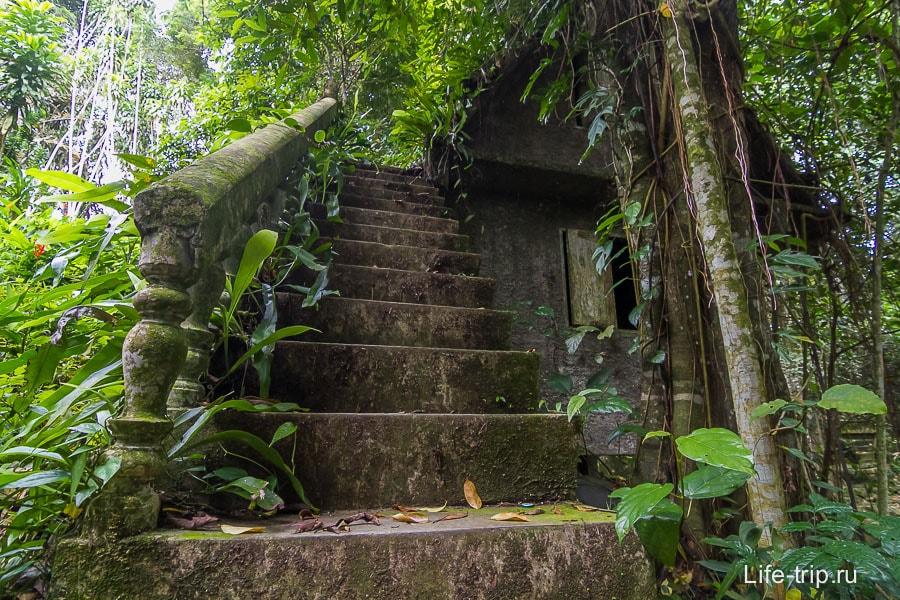 Лестница в неизвестность