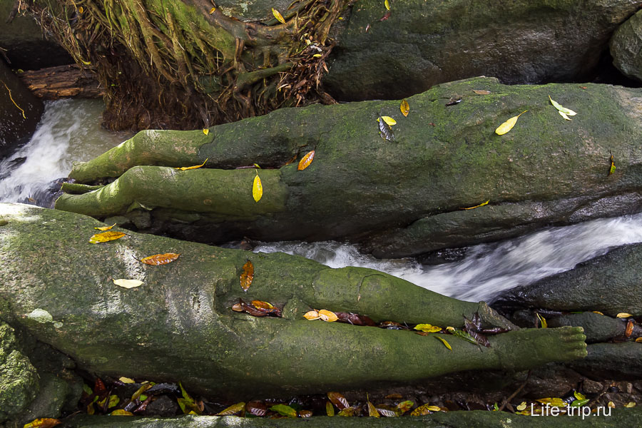 Русло реки и ноги торчащие из камня