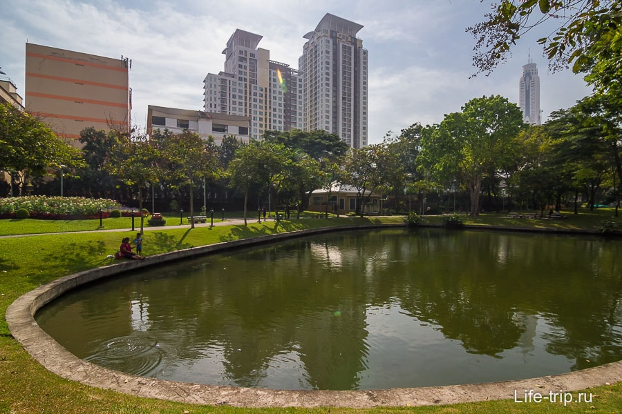 Пруды в центре парка