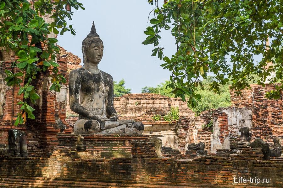 Будда среди развали и деревьев