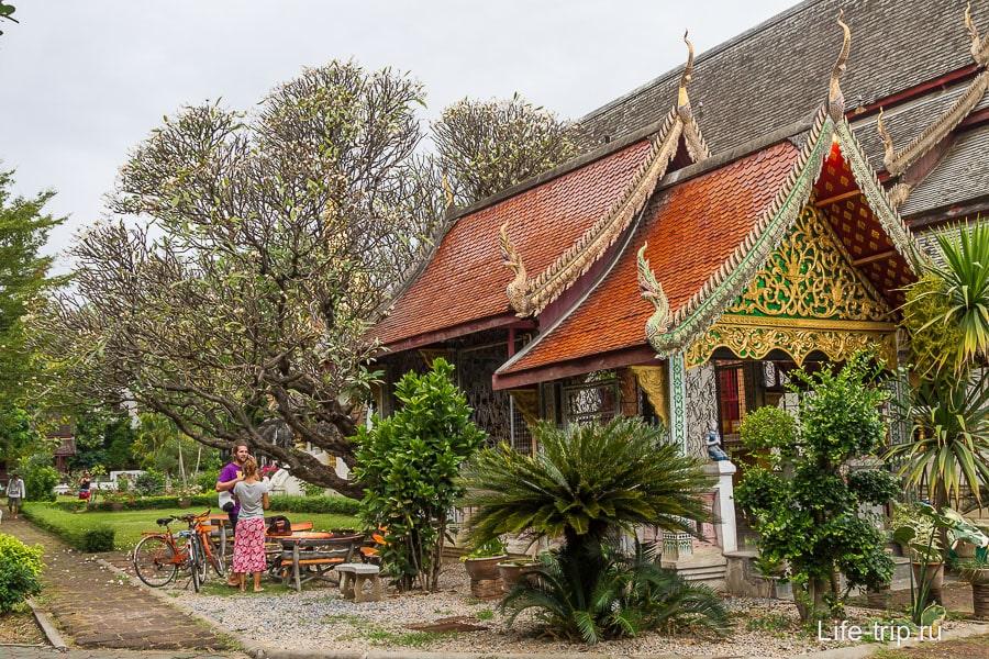 Около Wat Chiang Man очень зелено