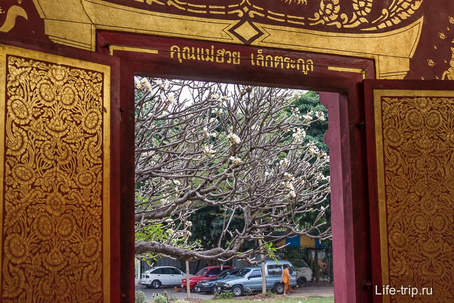 Вид из окна Wat Chiang Man